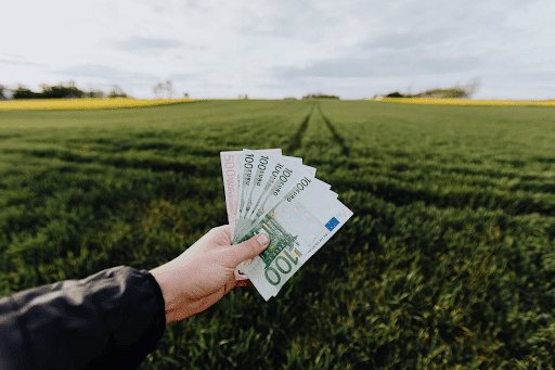A crop farmer showing money in a green summer field in the countryside