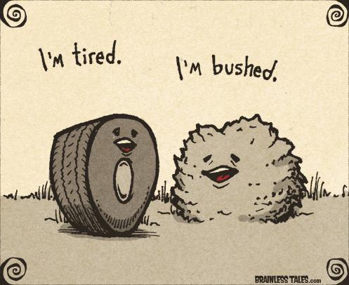 "tire saying ""I'm tired"" and bush saying ""I'm bushed"" funny image"